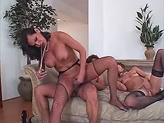Horny dick sucking shemale get cummed face